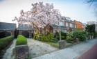 Appartement Hatertseweg-Nijmegen-St. Anna