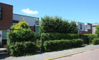 Huurwoning Fresiatuin-Bergschenhoek-Eilandenbuurt