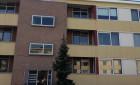 Appartement Professor van der Veldenstraat-Nijmegen-Galgenveld