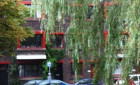 Appartement Bergsingel-Rotterdam-Liskwartier