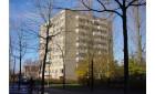 Appartamento Grote Beer-Amstelveen-Middenhoven