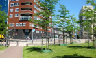 Apartment Groningerstraat-Amersfoort-Puntenburg