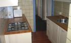 Apartment Hommelseweg 319 kamer-Arnhem-Graaf Ottoplein en omgeving