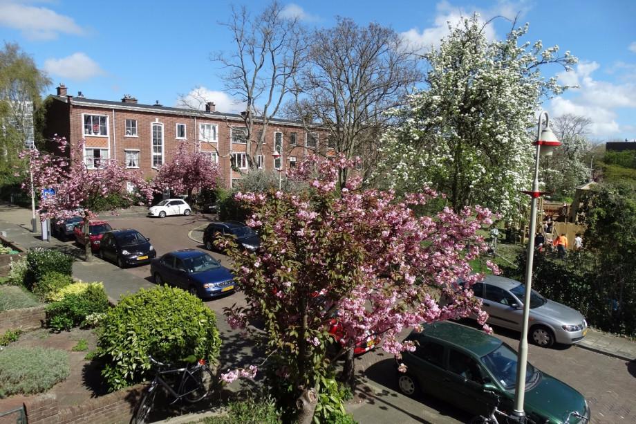 Pararius Huurwoningen Zuid-Holland Den Haag Bezuidenhout Appartement ...
