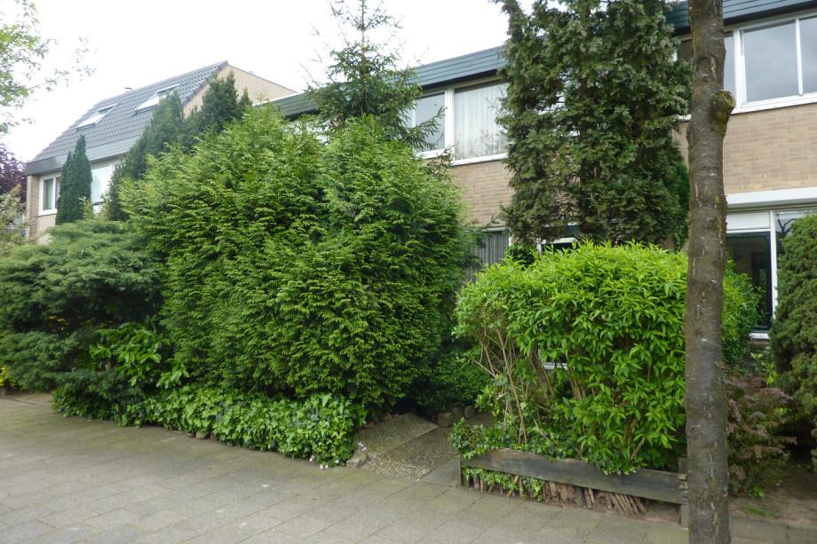 Huurwoning te huur loevestein ede voor 890 for Huis te huur in gelderland