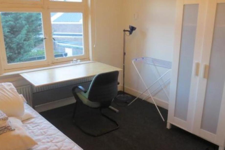 Beddengoed eindhoven trend plus babykamer in met schommel ledikanten for Trend wallpaper voor volwassen kamer