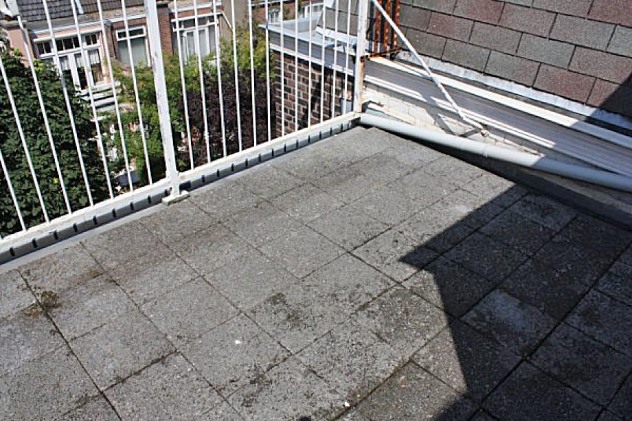 Appartamenti In Affitto Den Haag