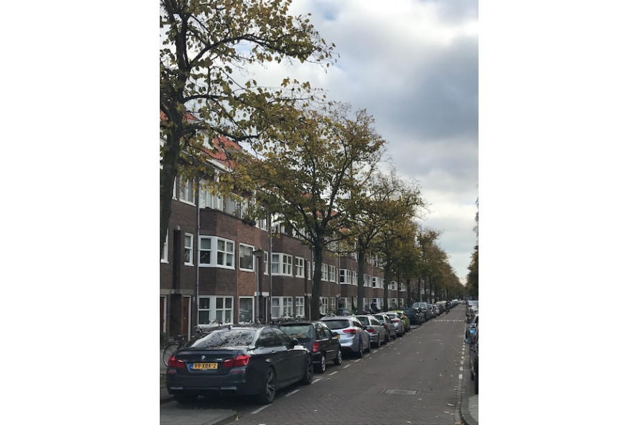 Location appartement amsterdam orteliusstraat prix 1 225 - Immobilier amsterdam location ...