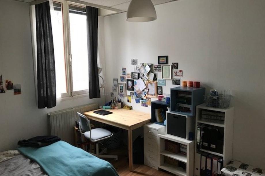 Maastricht Student Rooms Rent