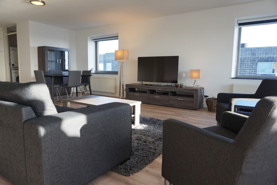 Apartment For Rent Gedempte Zalmhaven Rotterdam For 2400