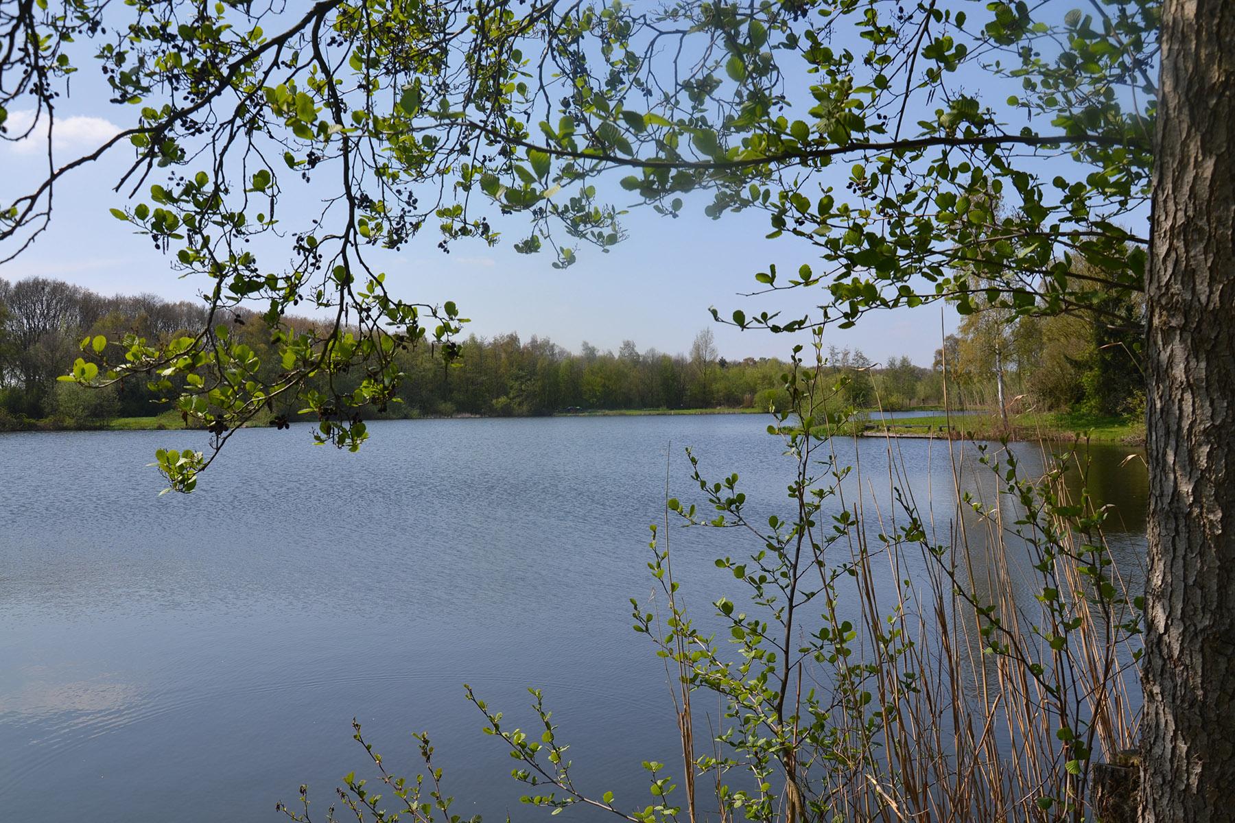 Property Development Header : Nieuwbouwproject moorland in oirschot